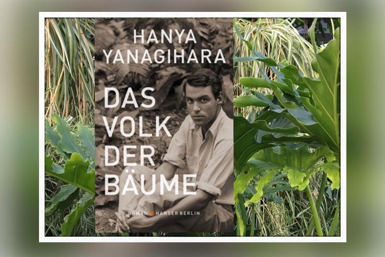 Hanya Yanagihara - Das Volk der Bäume