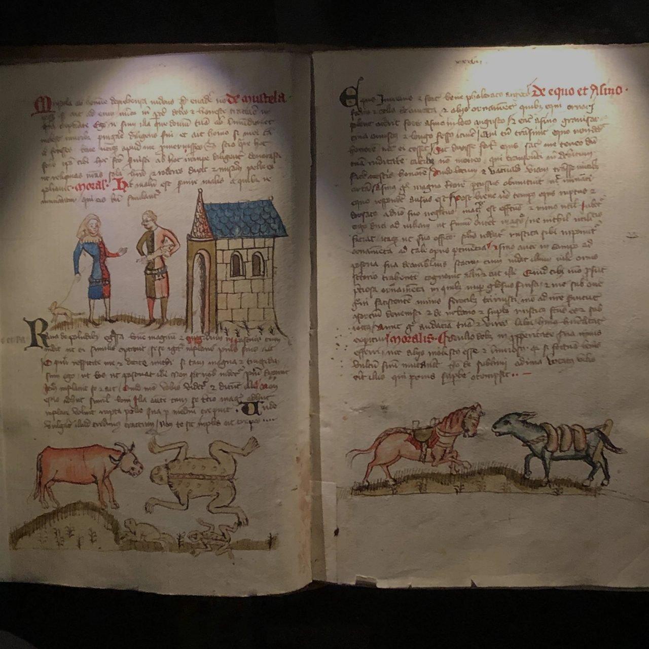 Schatzkammer Trier - Die Fabeln des Äsopund Avian - Buecherkaffee.de, Florian Valerius