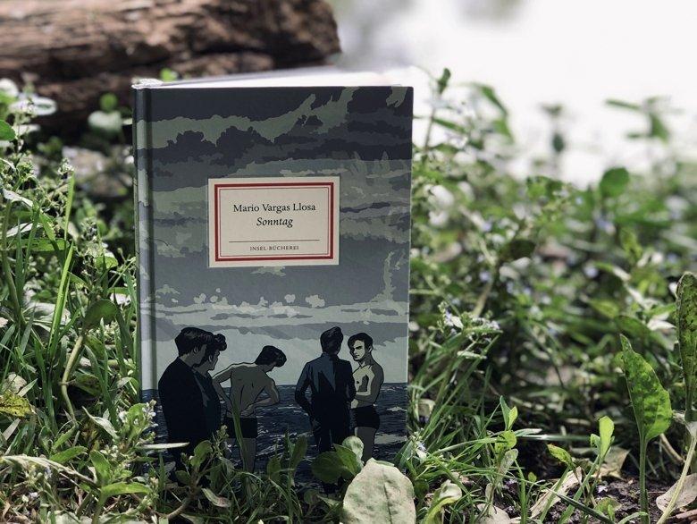 Mario Vargas Llosa | Sonntag || Buchvorstellung BücherKaffee, Alexandra Stiller